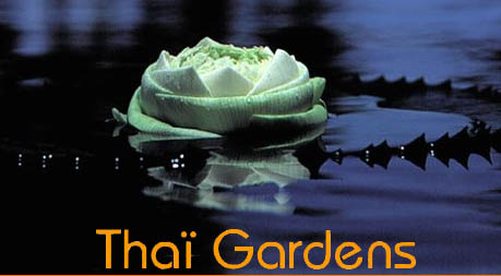 Thai Gardens